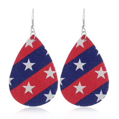Starry Print Color Block American Flag Print Earring Set